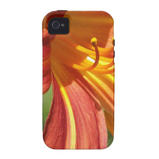 Lirio tigrado anaranjado Case-Mate iPhone 4 carcasas