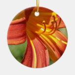Lirio tigrado anaranjado ornamente de reyes