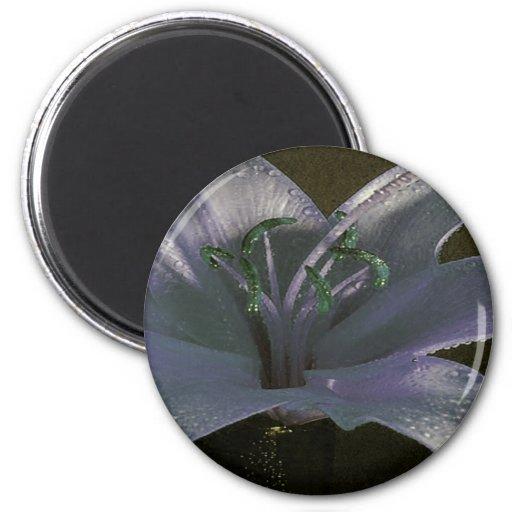 Lirio verde y azul imán redondo 5 cm