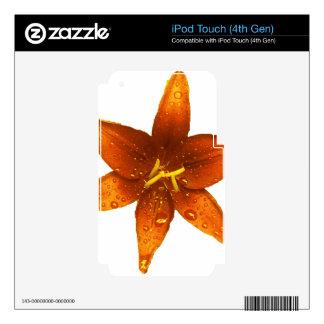 Lirio vibrante anaranjado iPod touch 4G calcomanías