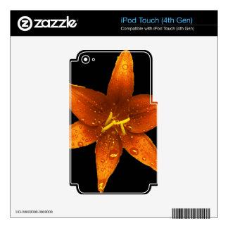 Lirio vibrante anaranjado skins para iPod touch 4G