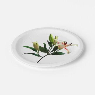Lirio y brotes elegantes platos de papel