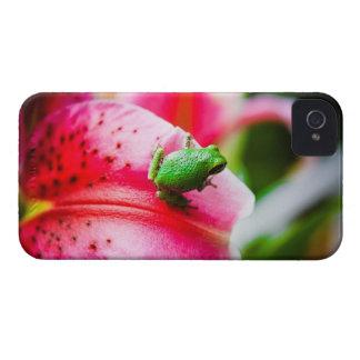 Lirio y la rana arbórea Case-Mate iPhone 4 cárcasa