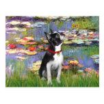 Lirios #2 - Boston Terrier 2 Postales