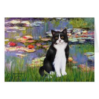 Lirios 2 - Gato blanco y negro Tarjetón