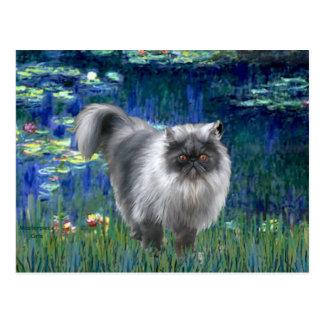 Lirios 5 - Gato persa del humo azul Postal
