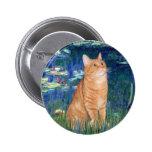 Lirios 5 - Gato SH 46 del Tabby anaranjado Pins