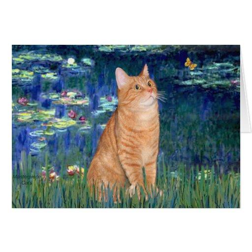Lirios 5 - Gato SH 46 del Tabby anaranjado Felicitación