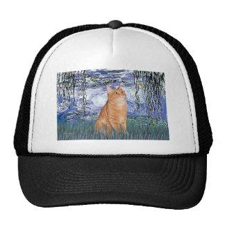 Lirios 6 - Gato de Tabby anaranjado 46 Gorros Bordados
