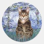 Lirios 6 - Gato de tigre del Tabby 30 Pegatina Redonda