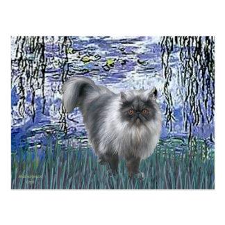Lirios 6 - Gato persa del humo azul Postal