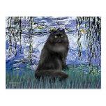 Lirios 6 - gato persa negro postales