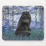 Lirios 6 - gato persa negro alfombrillas de ratones