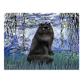 Lirios 6 - gato persa negro postal