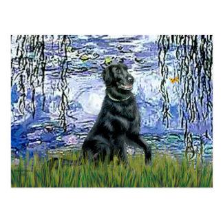 Lirios 6 - Perro perdiguero revestido plano 2 Tarjeta Postal