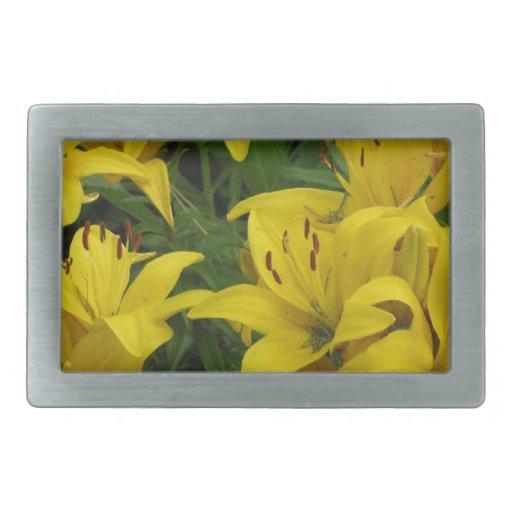 Lirios amarillos en masa hebillas de cinturón rectangulares