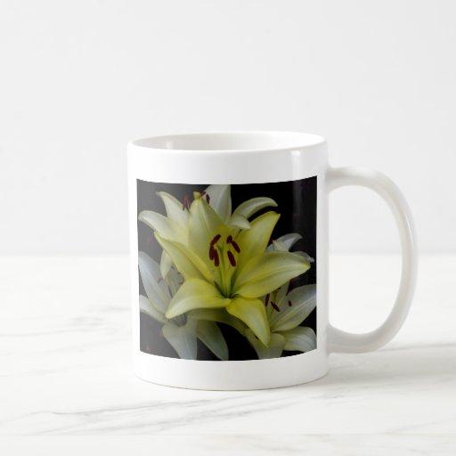Lirios amarillos y blancos taza clásica