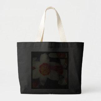 Lirios brillantes bolsas