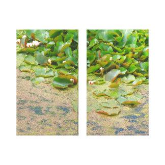 Lirios de agua Liliypads Impresión En Lienzo