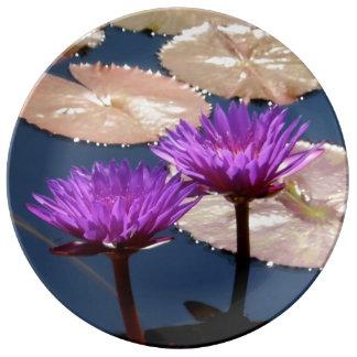 Lirios de agua púrpuras plato de cerámica