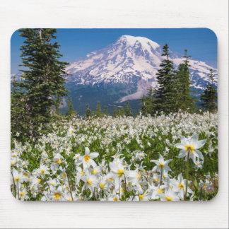 Lirios de avalancha y el Monte Rainier 2 Alfombrilla De Ratón