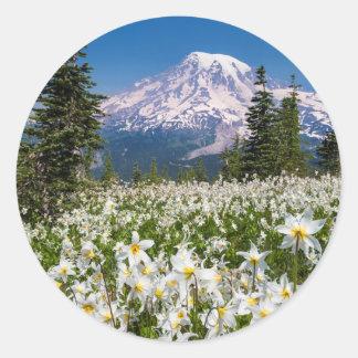 Lirios de avalancha y el Monte Rainier 2 Pegatina Redonda