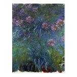 Lirios de la joyería de Claude Monet Tarjeta Postal