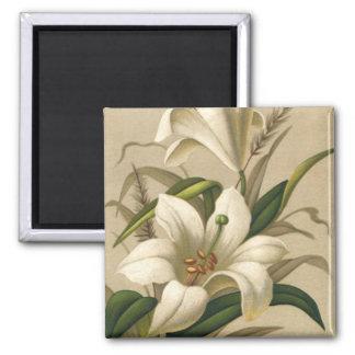 Lirios de pascua del vintage, flores del Victorian Imán Cuadrado