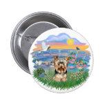 Lirios Yorkshire Terrier (#17) de la salida del so Pin