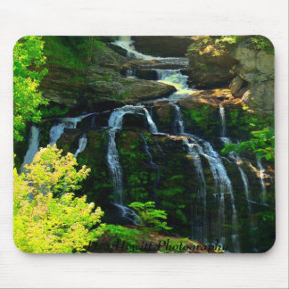 Lisa Hewitt Photography Mouse Pad