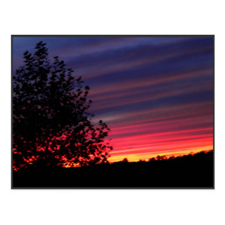 Lisa's Sunset Post Card