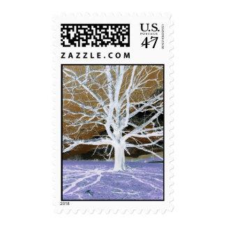 Lisa's Tree - Stamp