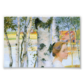 Lisbeth  at the Birch Trees Photo Print