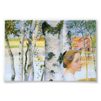 Lisbeth en los árboles de abedul fotografías