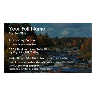 Liscombe River, Nova Scotia, Canada Double-Sided Standard Business Cards (Pack Of 100)