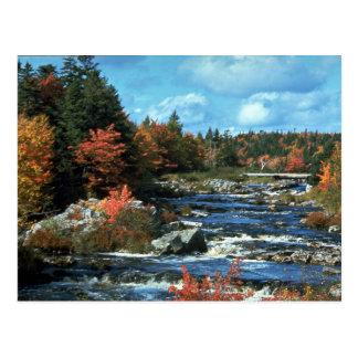 Liscombe River, Nova Scotia, Canada Postcard