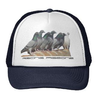 Listas para volar gorras de camionero
