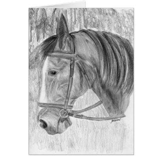Listening Beauty horse art Card