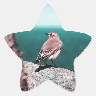 Listening To The Sea Star Sticker