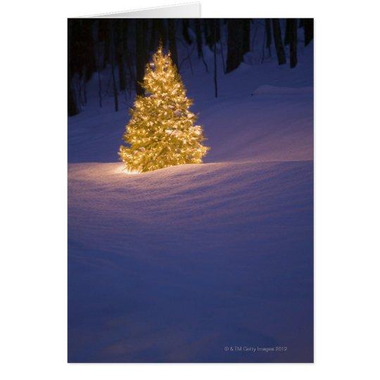 Lit Christmas tree outside Card
