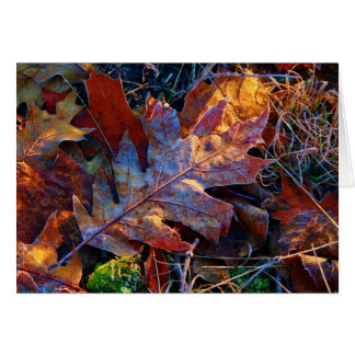Lit Up Frosted Autumn Leaves Card