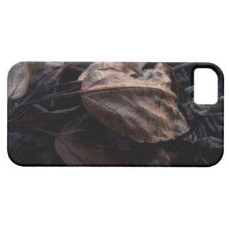 Litera crujiente de la hoja iPhone 5 carcasa