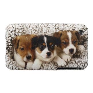 Litera de perritos iPhone 3 protector