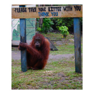 Litera y basura de la protección v de la fauna póster