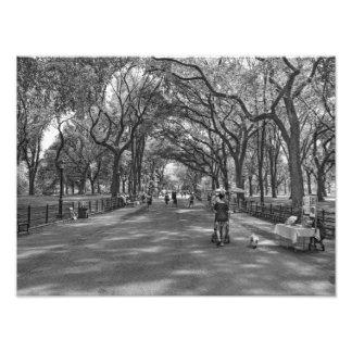 Literary Walk- Central Park, New York Photo Print