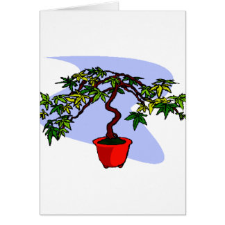 Literati Maple Bonsai Graphic Image Greeting Cards