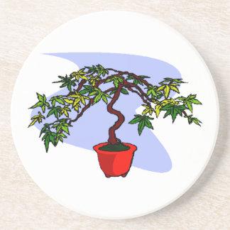 Literati Maple Bonsai Graphic Image Coaster