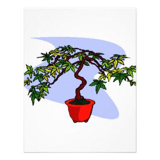 Literati Maple Bonsai Graphic Image Personalized Announcement