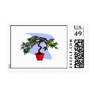 Literati Maple Bonsai Graphic Image Stamps