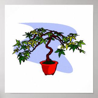 Literati Maple Bonsai Graphic Image Print